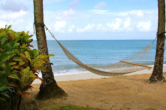 Villa Beach Cottages: My favorite hammock.