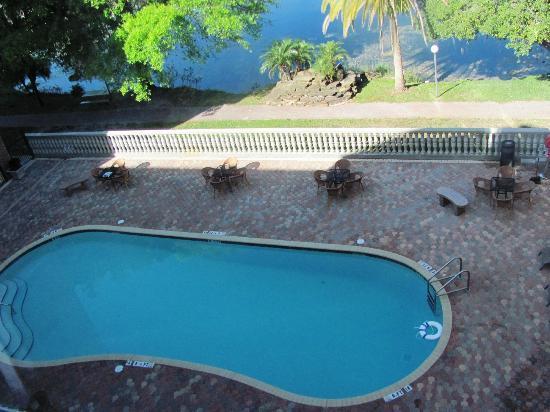 تامبا ستيديوم هوتل: The back poolside area.