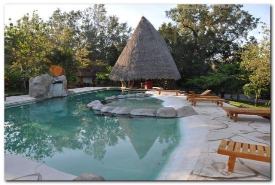 Canon de la Vieja Lodge: La piscine et son bar