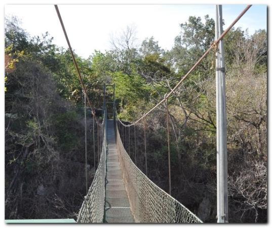 Canon de la Vieja Lodge: Pont suspendu au dessus du canyon