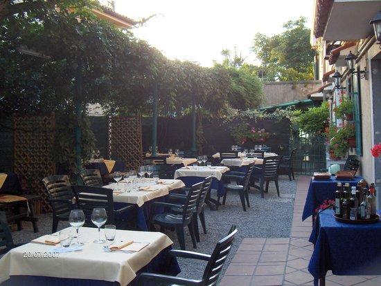 Al Toscano : Il nostro giardino fiorito