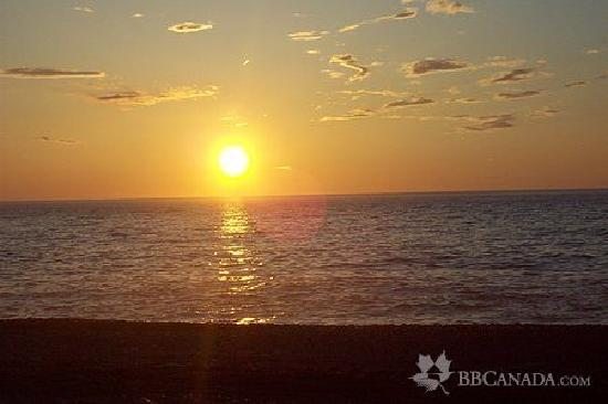 The Poplar B&B: B&B is within walking distance to all our local rockey beaches and beautiful sunsets!