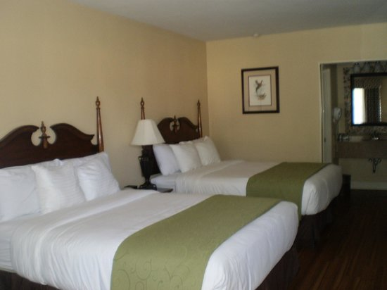 Merry Acres Inn: beds in two queen standard room
