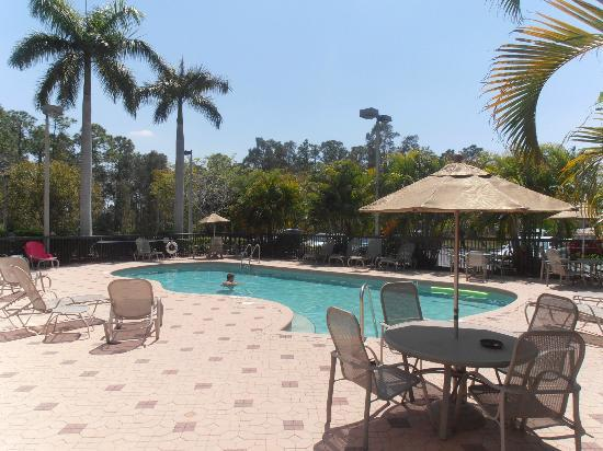 Days Inn & Suites by Wyndham Fort Myers Near JetBlue Park : pool area