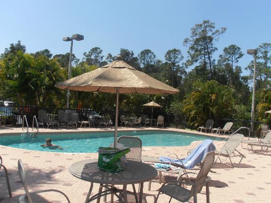 Days Inn & Suites Fort Myers near JetBlue Park: pool area