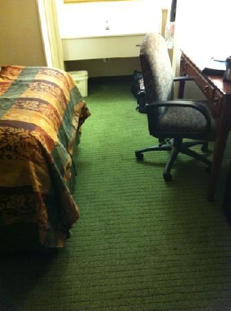 Best Western Charleston Inn: pretty tight and tiny, chair stuck under desk