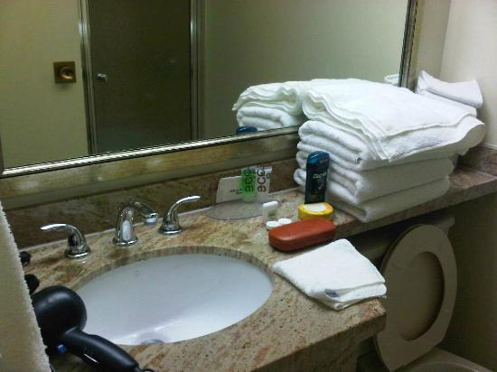 Best Western Cowichan Valley Inn : Bathroom