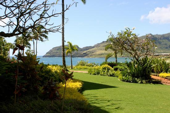 Marriott's Kauai Lagoons: Outside our room to the left, can't see this unless you step out onto the grass
