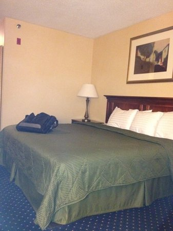 Comfort Inn Randolph : very nice room...