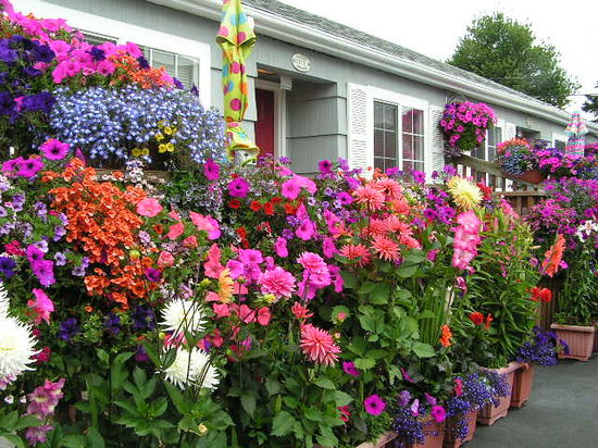 Seaside, OR: Flowers Bloom throughout Summer