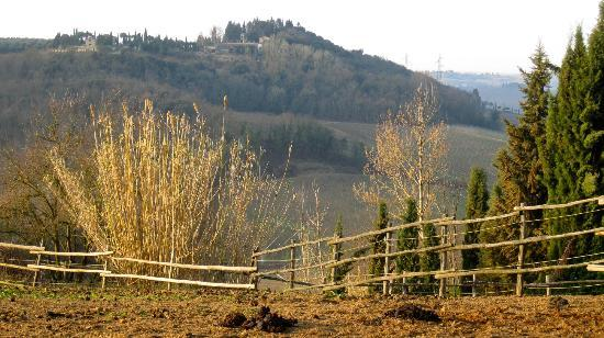 Santa Maria a Poneta: view from the drive