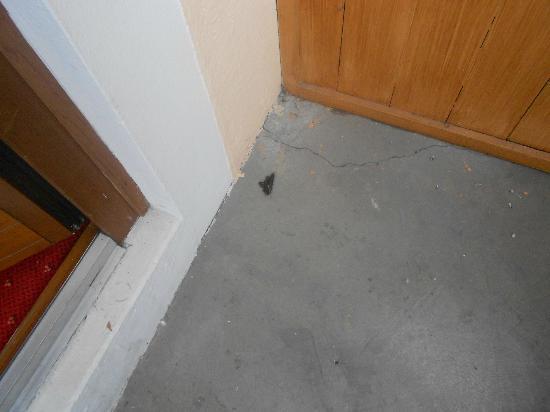 Hotel Ferienwelt Kristall: animal feces as you open the room balcony door