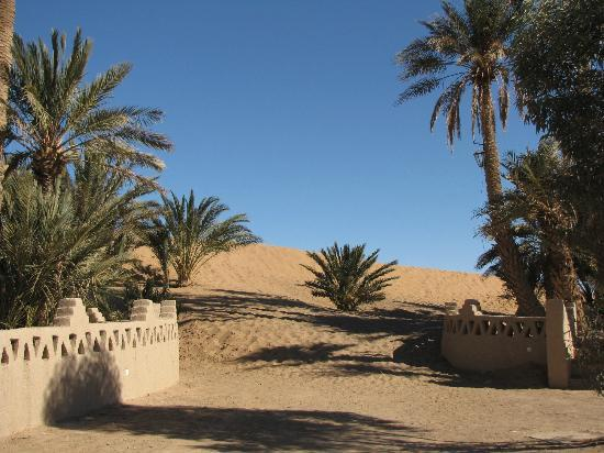 Auberge Camping Sahara: From the courtyard