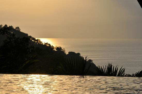 Makanda by the Sea: Poolblick