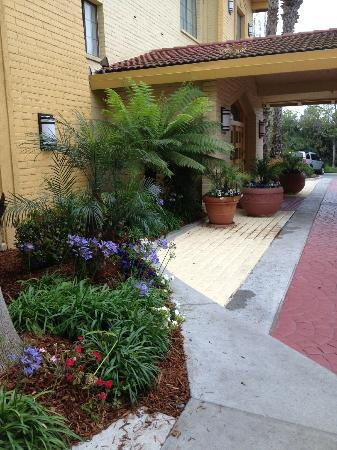 La Quinta Inn Ventura: Nice flowers at the entrance