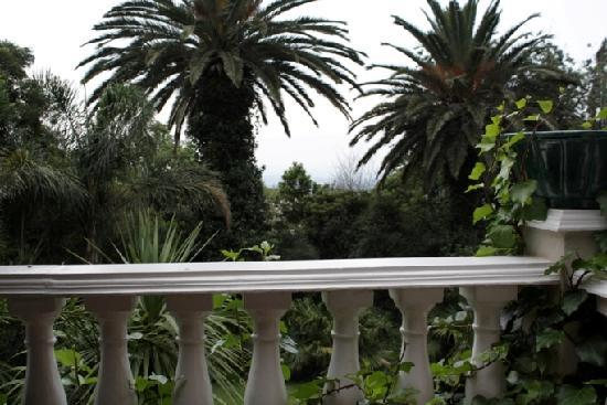 Northcliff Manor Guest House: View from Patio