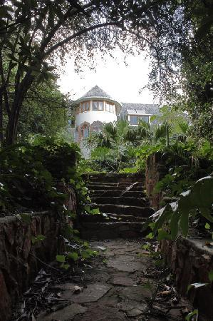Northcliff Manor Guest House: Garden
