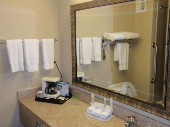Holiday Inn Express Peachtree Corners/Norcross: Bathroom