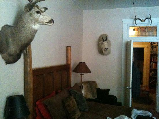 The Broadway Hotel : Sleeping companions in the Sportsman room