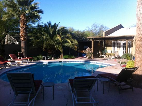 Arizona Sunburst Inn: Pool