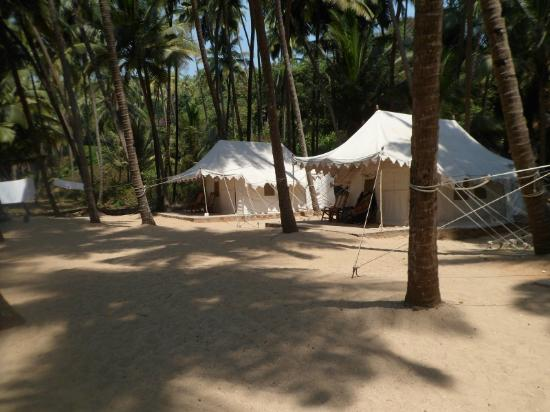 Cola Beach Exclusive Tented Resort: The tents at Cola Beach
