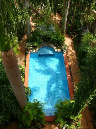Los Arcos Bed & Breakfast: Pool von der Dachterrasse aus
