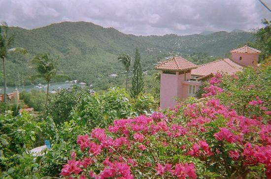 Nature's Paradise: View over Marigot Bay