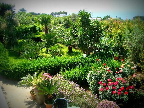 Villa Damecuta: giardino