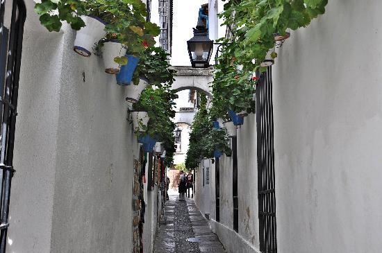 Jewish Quarter (Juderia): Una calle