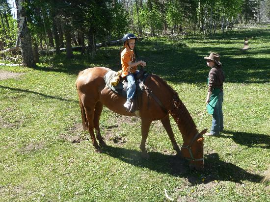 Horse back rides available just up the road from Pine River Lodge