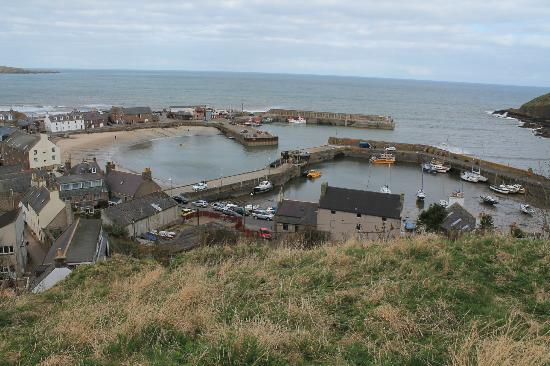 Craig-ma-Cair B & B: Harbour