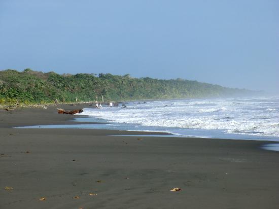 Suizo Loco Lodge Hotel & Resort: Die Playa Grande - ca. 10 Minuten zu Fuß entfernt
