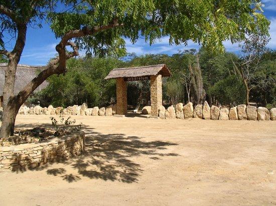 Antsokay Arboretum