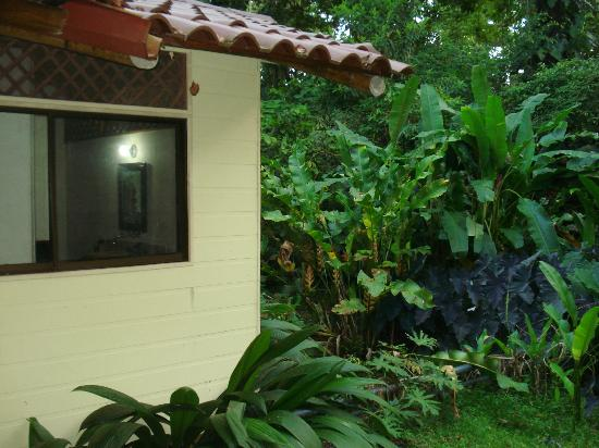 Casa Faya Lobi: house