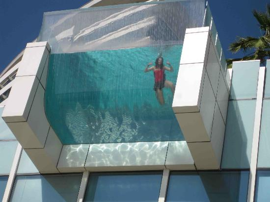 Nice glass bottom feature of pool picture of for Pool show dubai