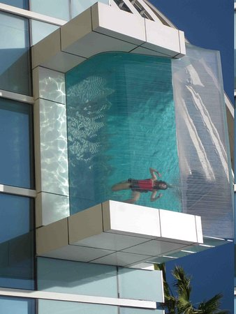 Nice glass bottom feature of pool picture of for Pool design dubai
