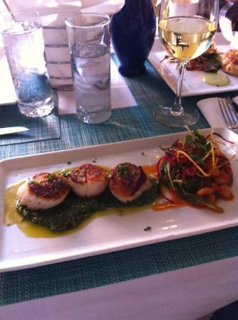 Pesce : Scallops in Pesto with beans