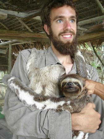 Amazon Rainforest: the babies sloths