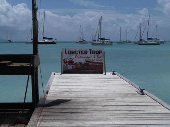 The Lobster Trap sign greets you from a peaceful harbor on the Caribbean side of Anegada Is.