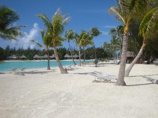 Best Overwater Bungalows in Tahiti  TripSavvy