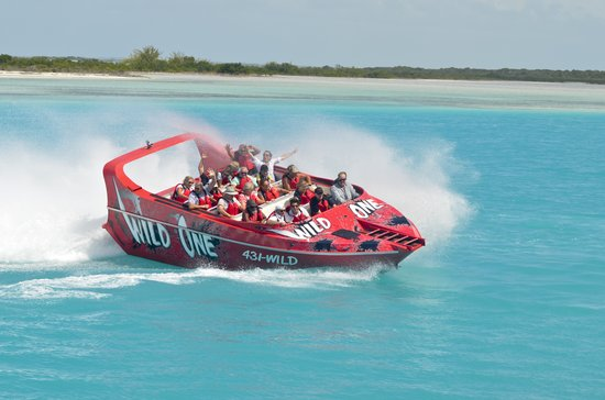 Wild One Jet Boat Tours: Slides and drifts in turquoise waters of the Turks & Caicos