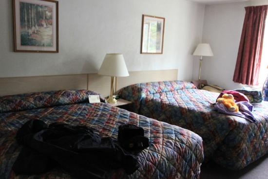 Super 8 Lacey/Olympia Area: Room view (sorry, that's our stuff on the beds)