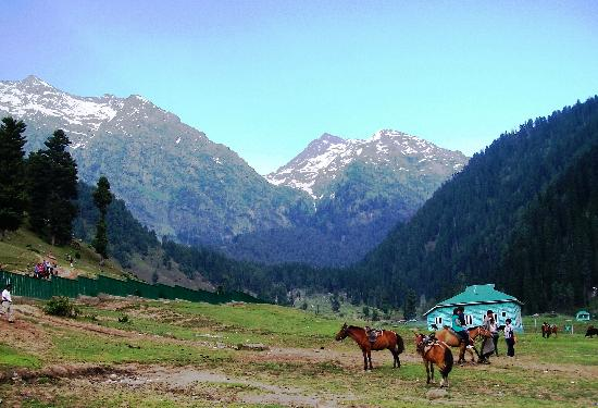 Cachemira, India: kashmir