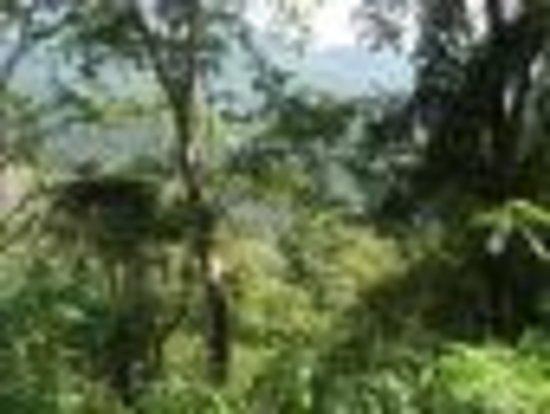 Nature Trail Ella