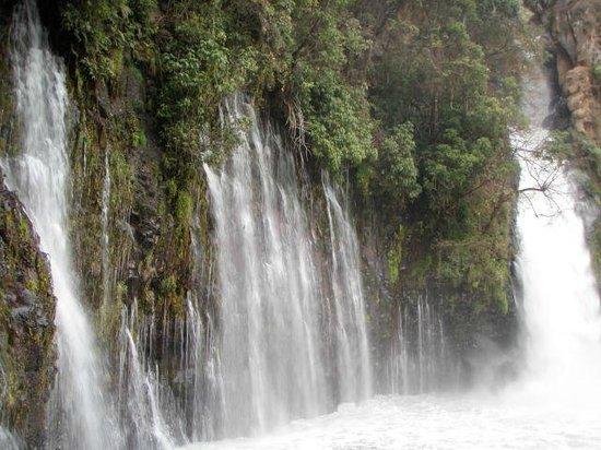 Michoacan, Meksika: Vista de cascadas la Tzararacua