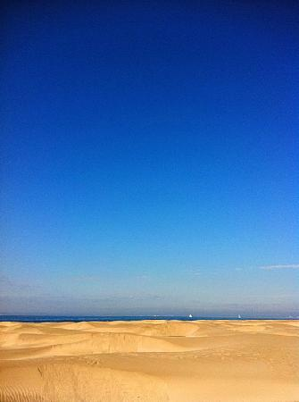Espiguette Beach: les dunes de l'espiguette