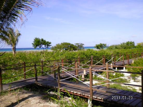 Melia Buenavista: camino a una de las playas