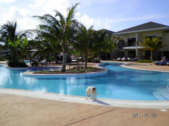 Melia Buenavista: una de las piscinas