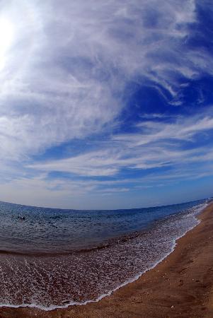 بالميرا بيتش ريزورت آند سبا: Пляж