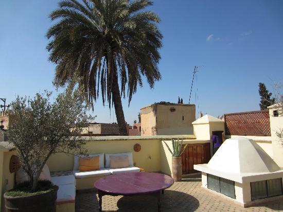 Dar Charkia: On the roof